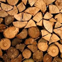 drewno1.jpeg